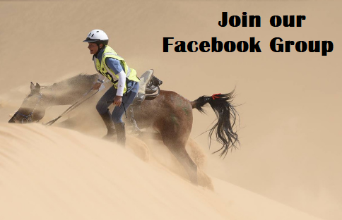 Link to the Equestrian Adventuresses Facebook Group